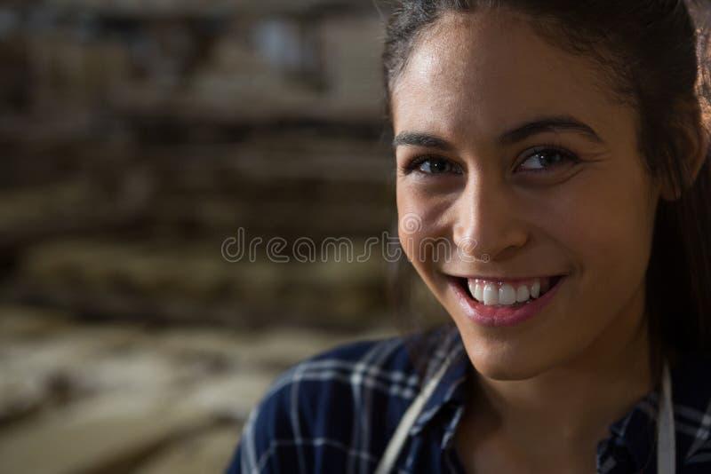Nahaufnahme des weiblichen Töpfers lizenzfreie stockfotografie