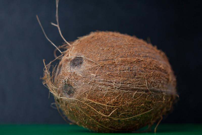 Nahaufnahme einer exotischen und frischen Kokosnuss auf einem schwarzen Hintergrund stockbilder