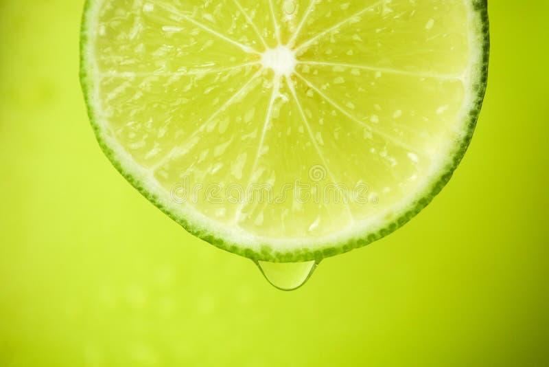 Nahaufnahme einer Scheibe des Kalkes, ein Wassertropfen fällt Der Frucht Gi stockfoto