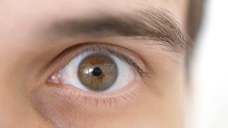 Nahaufnahme eines überraschten emotionalen Mannes mit braunem Auge lizenzfreie stockfotos