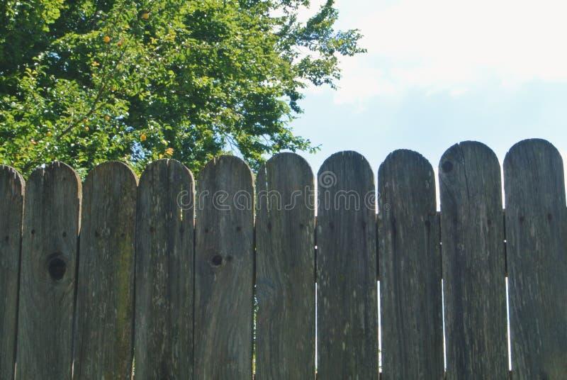 Nahaufnahme eines alten hölzernen ländlichen Zauns mit einem Gartenobstgarten behi lizenzfreie stockfotos