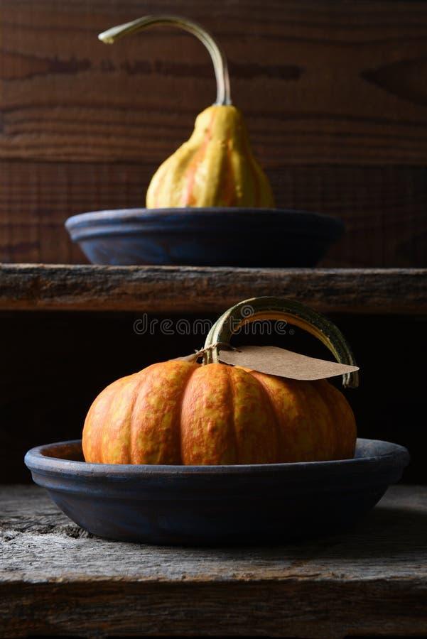 Nahaufnahme eines Bauernhofstands mit Herbst ein Kürbis, Kürbis lizenzfreies stockfoto
