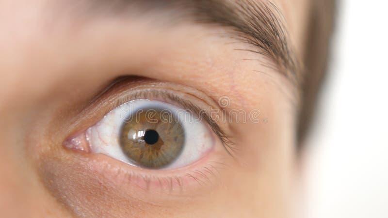Nahaufnahme eines ?berraschten emotionalen Mannes mit braunem Auge stockbilder