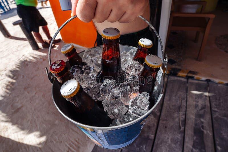 Nahaufnahme eines Eiseimers mit Bier in den Händen eines Mannes auf dem Strand stockfotos