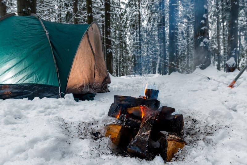 Nahaufnahme eines Feuers im Schnee vor dem hintergrund eines Grüns stockbilder