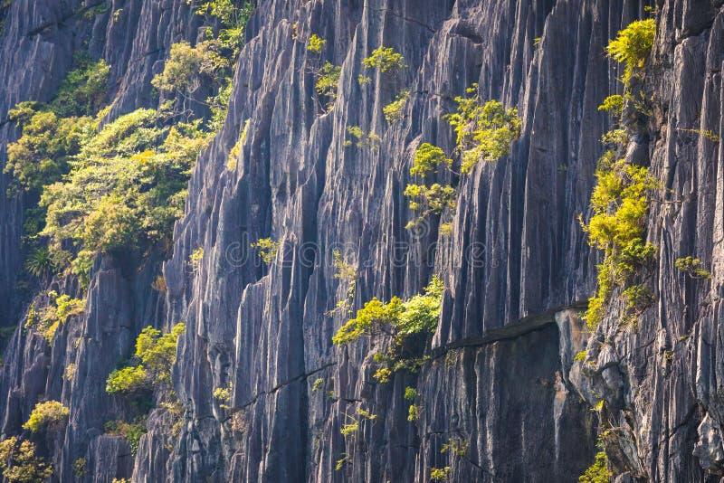 Nahaufnahme eines Karstberges, Felsenbeschaffenheit stockfotografie