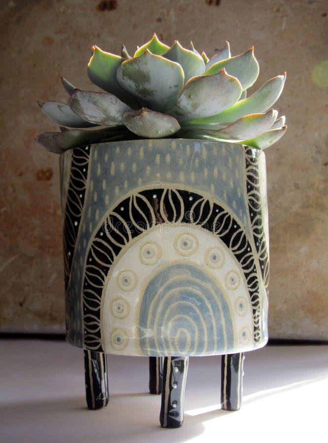 Nahaufnahme eines keramischen artsy Topfes mit einer schönen Anlage in ihr auf einem grungy Hintergrund lizenzfreie stockbilder