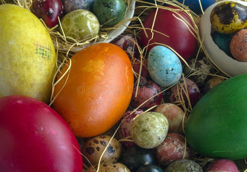 Nahaufnahme eines mehrfarbigen Eies der Wachteln, der Henne und der Ente auf Stroh stockbilder