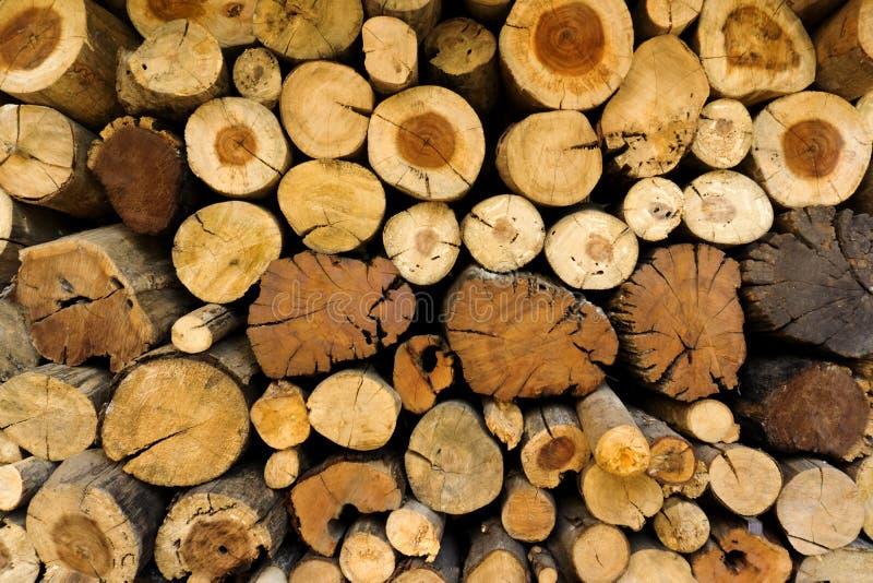 Nahaufnahme eines Stapels der Klotz, welche die Querschnitte, den Querschnitt betrachtend zeigen, schneidet, das Muster des Baums lizenzfreie stockfotos