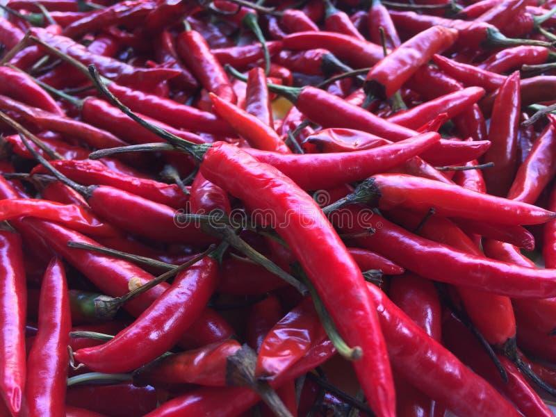 Nahaufnahme einige rote Paprikas gemischt für Thaifood lizenzfreie stockfotografie