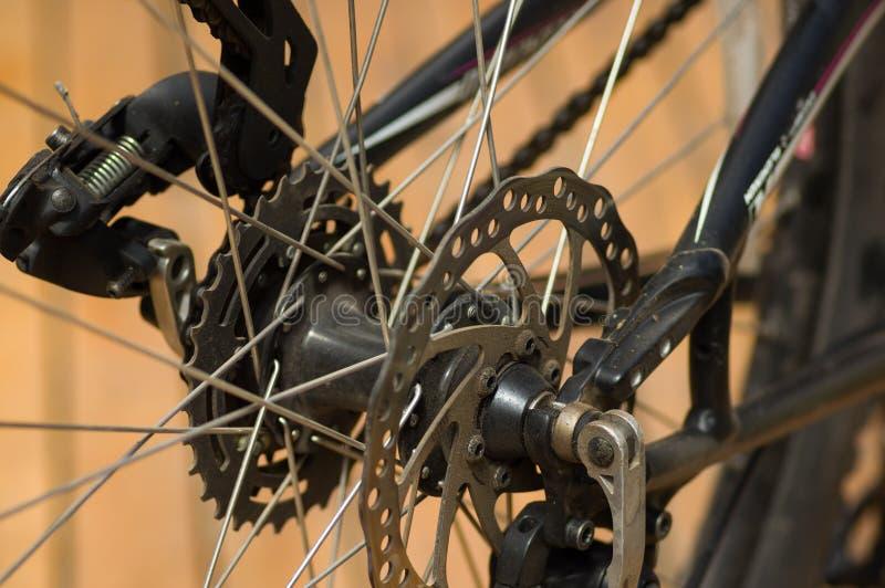 Nahaufnahme führte Blick an Verschiebungsmechanikern des Fahrradfelgegangs während der laufenden Reparaturen einzeln auf stockfotos