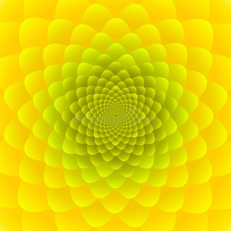 Nahaufnahme-gelber Sonnenblumenblütenstand Abstraktes Blumenmusterdesign stock abbildung