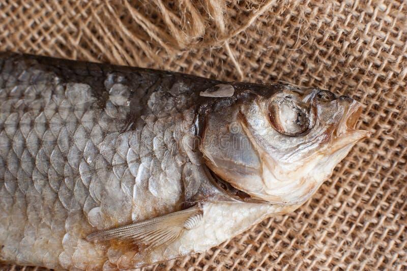 Nahaufnahme getrocknete Flussfische auf bauschendem Hintergrund Beschneidungspfad eingeschlossen Kopieren Sie Platz lizenzfreie stockbilder