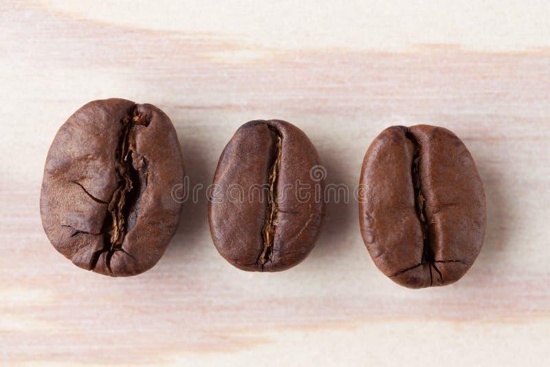 Nahaufnahme mit drei Röstkaffeebohnen stockbild
