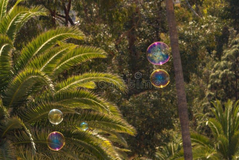 Nahaufnahme von den bunten Blasen, die in Hintergrund von Bäumen schwimmen lizenzfreie stockbilder
