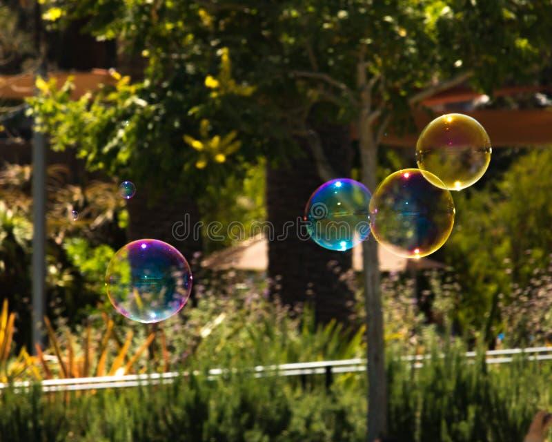 Nahaufnahme von den bunten Blasen, die in Hintergrund von Bäumen schwimmen stockfotografie
