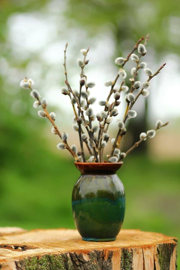 Nahaufnahme von Frühling Pussyweidenkätzchenniederlassungs-/twigs-Blumenstrauß stockfotos