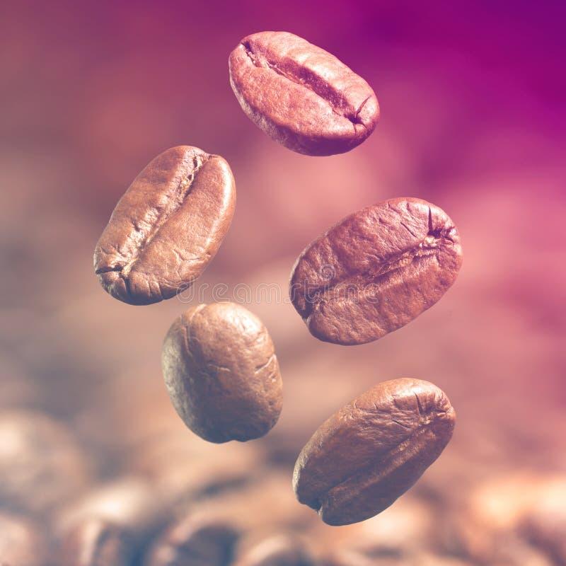 Nahaufnahme von Kaffeebohnen stockfoto