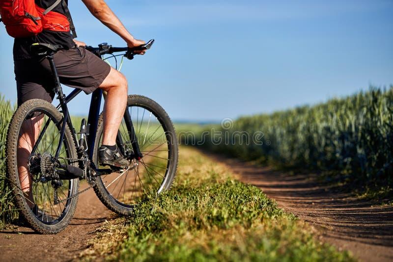 Nahaufnahme von Radfahrermannbeinen mit Mountainbike auf dem Weg des grünen Feldes in der Landschaft lizenzfreie stockfotografie