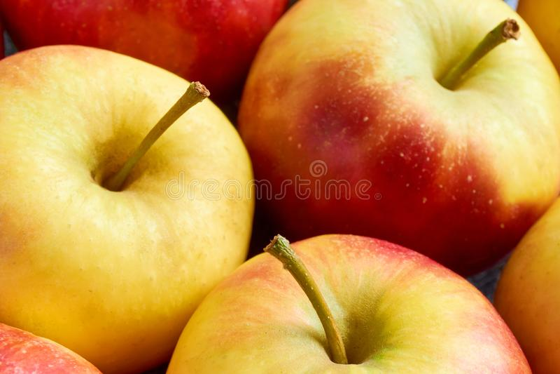 Nahaufnahme von roten gelben Äpfeln mit Apfelstiel stockbilder