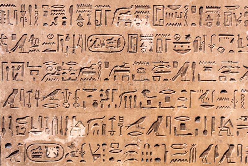 Nahaufnahme von verschiedenen ägyptischen Hieroglyphen stockbild