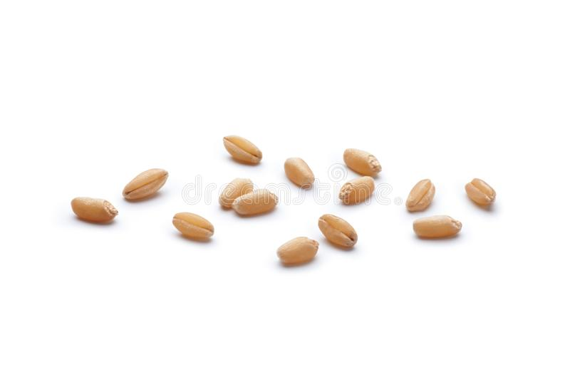 Nahaufnahme von Weizenk?rnern lizenzfreie stockbilder