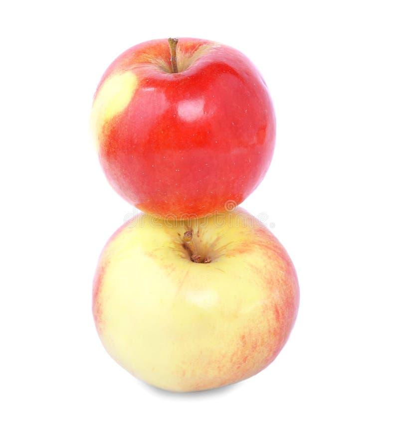 Nahaufnahme von zwei süßen rot-gelben Äpfeln, lokalisiert auf einem weißen Hintergrund Reife, nahrhafte, helle Früchte Ein gesund stockbild