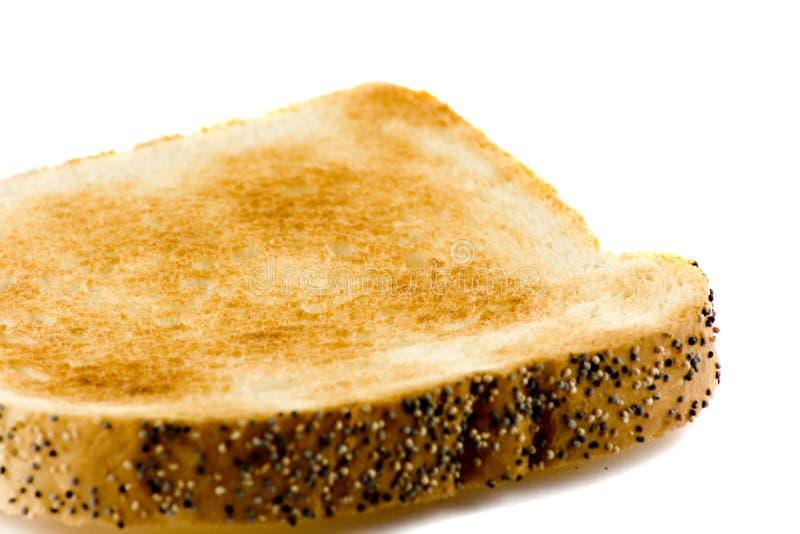 Nahaufnahmeabbildung eines Toastbrotes getrennt lizenzfreie stockbilder