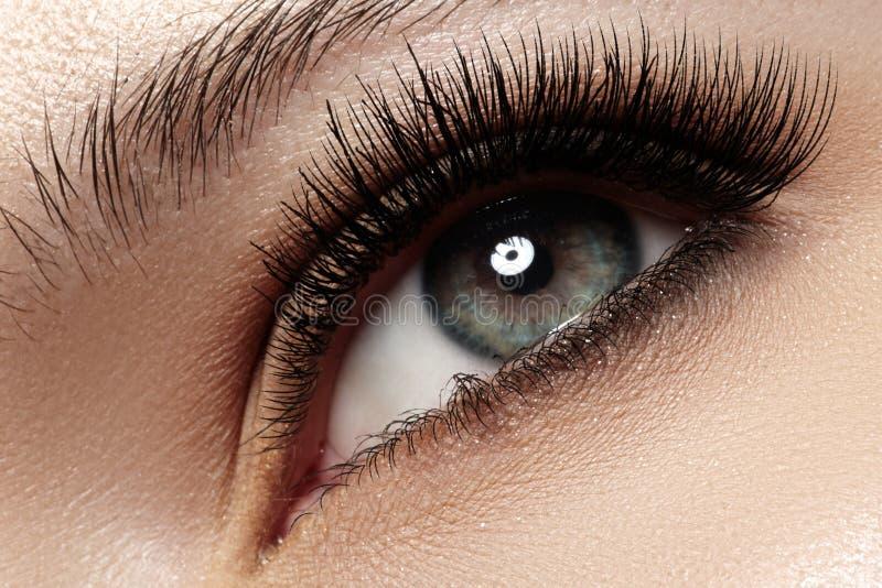 Nahaufnahmeauge mit den natürlichen besonders langer und des Volumens des Modelichtes Wimpern des Makes-up, stockbild
