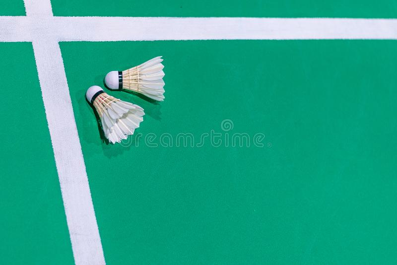 Nahaufnahmebadmintonfederball auf grünem Gericht stockfotos