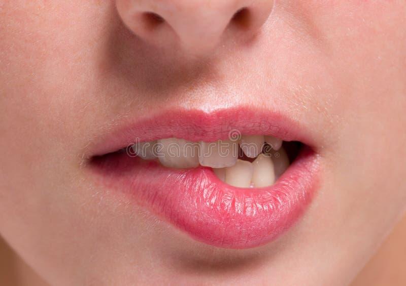 Nahaufnahmebisse auf Lippen lizenzfreie stockfotografie