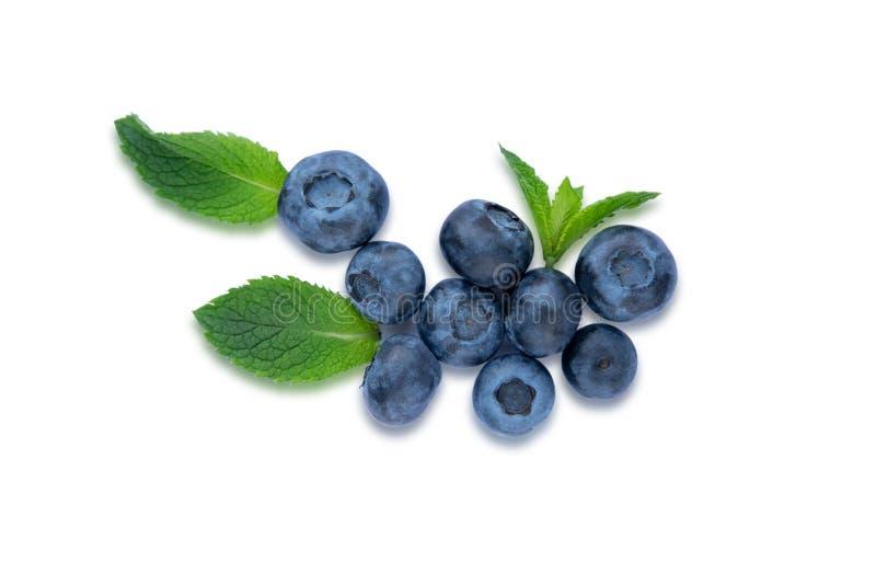 Nahaufnahmeblaubeerbeeren mit den tadellosen Blättern lokalisiert auf weißem Hintergrund Foto der Blaubeere für Designer auf der  lizenzfreies stockfoto