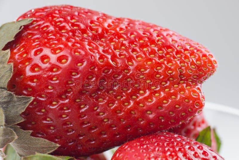Nahaufnahmedetail einer frischen roten Erdbeere lizenzfreie stockfotografie