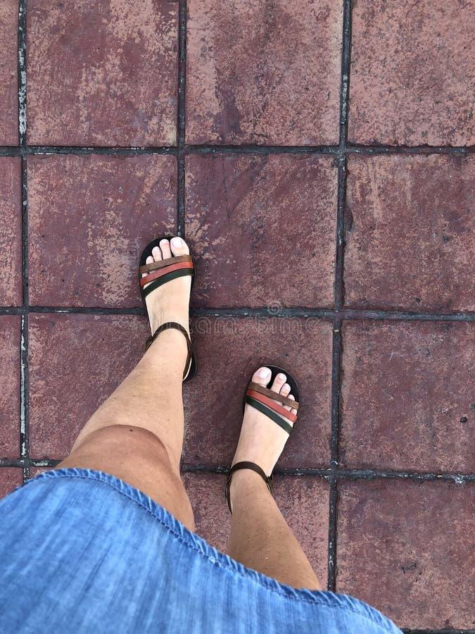 Nahaufnahmefüße tragende Sandalen einer Frau stockfotos