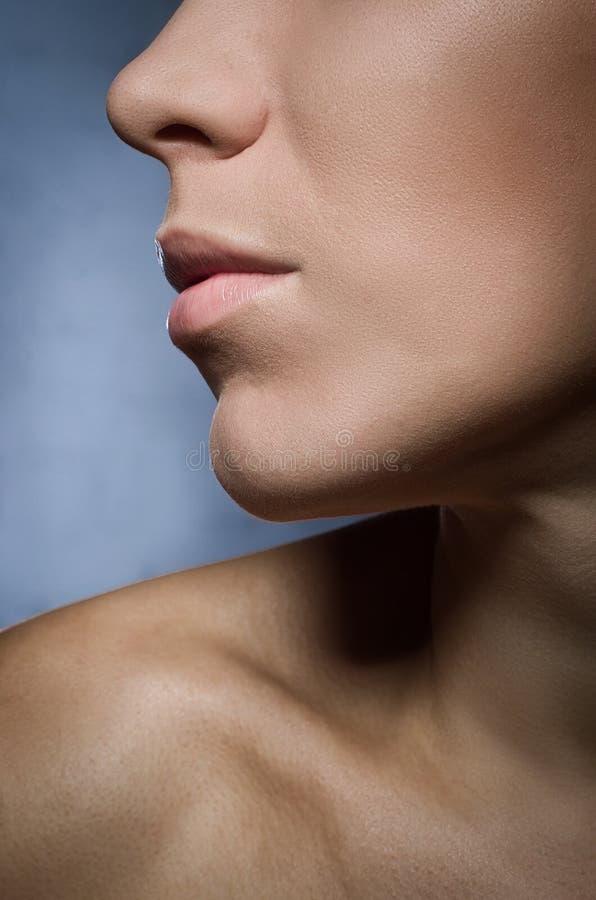 Nahaufnahmegesicht der jungen Frau der Schönheit - Lippen richten Zone her stockbilder