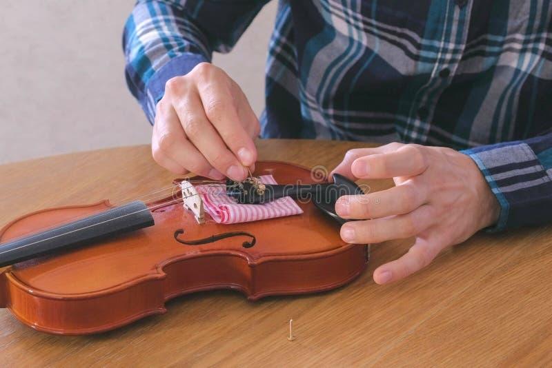 Nahaufnahmehände des jungen Mannes im karierten Hemd repariert eine Violine, die am Tisch sitzt Zieht die Bolzen in Platz fest stockfoto