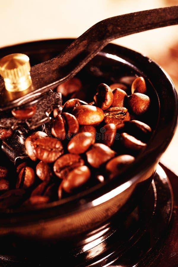 NahaufnahmeKaffeebohnen in einer Kaffeemühle lizenzfreies stockbild
