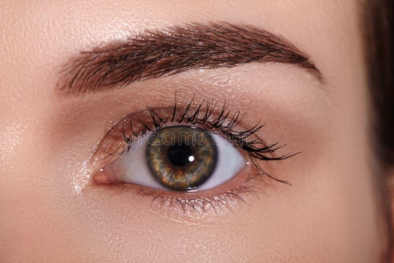 Nahaufnahmemakro des schönen weiblichen Auges mit perfekten Formaugenbrauen Säubern Sie Haut, Mode naturel Make-up Gute Vision stockbild