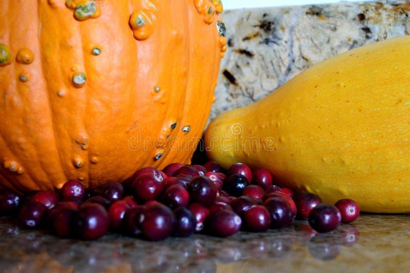 Nahaufnahmemoosbeerkürbiskürbis-Herbsternte stockfotografie
