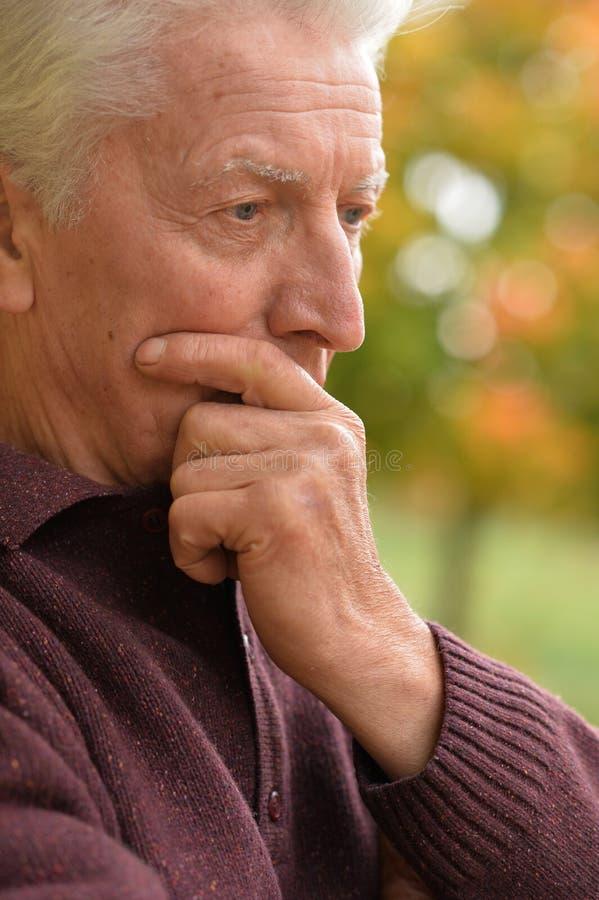Nahaufnahmeporträt des durchdachten älteren Mannes im Herbstpark stockfoto