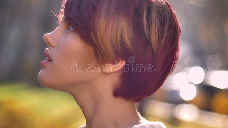 Nahaufnahmeporträt im Profil des jungen kühlen kaukasischen rosa-haarigen Mädchens, das träumerisch aufwärts auf sonnigen Parkhin stockbild