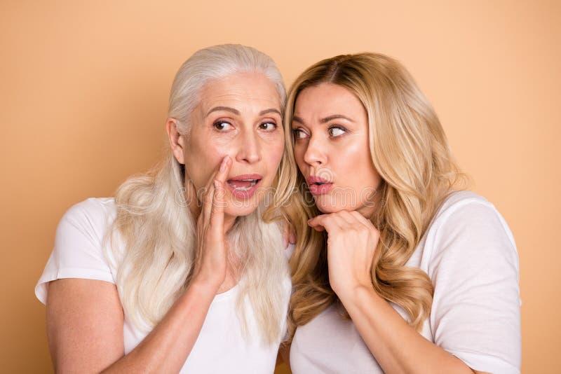 Nahaufnahmeporträt von den netten reizenden attraktiven netten reizend foxy fokussierten Damen, die das weiße T-Shirt teilt Versc lizenzfreie stockfotografie