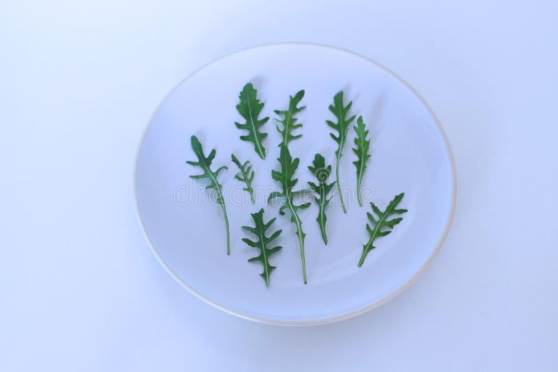Nahaufnahmeschuß von grünen frischen rucola Blättern lokalisiert auf weißer Platte Rocket-Salat oder Arugula Konzept der Diät und lizenzfreie stockfotografie