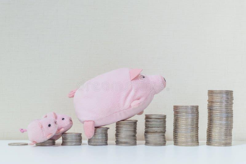 Nahaufnahmestapel des Münzenanfangs von Tief zu Hoch mit Schweinpuppe und kleinem Weg des Schweins drei zur Spitze der Münze auf  lizenzfreie stockbilder