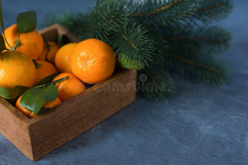Nahaufnahmezitrusfrucht Helle reife Tangerinen mit grünen Blättern in einem w stockfotos