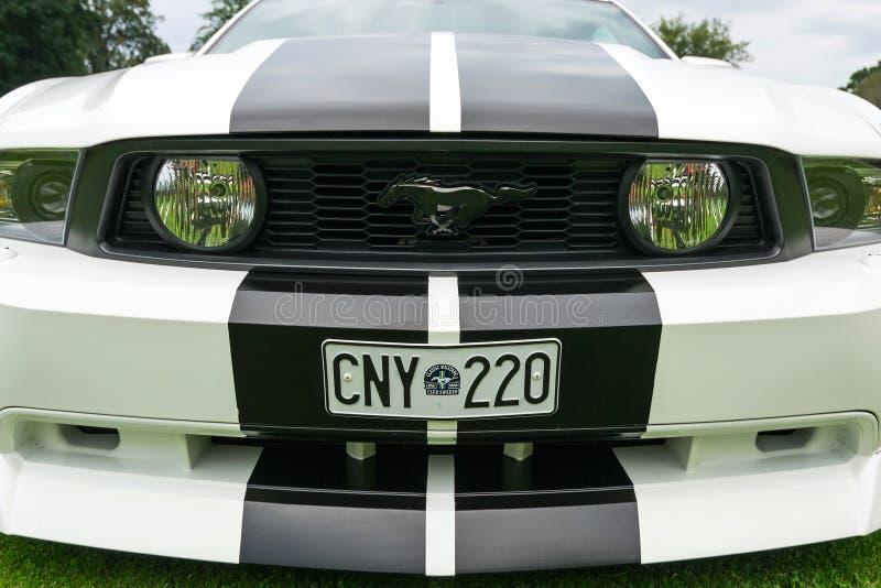 Nahe Ansicht der Front von Ford Mustang-Modell 2010 lizenzfreie stockfotografie