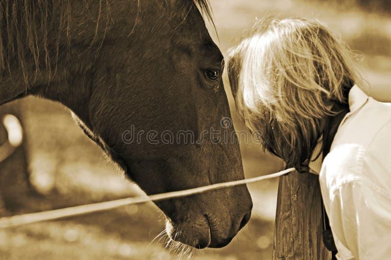 Nahe Bindung zwischen Frau und Pferd lizenzfreies stockbild