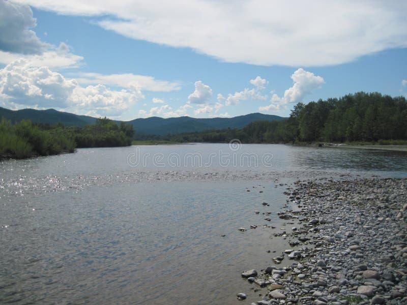 Nahe dem Fluss Fluss, Ufer stockbilder