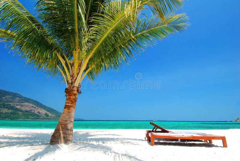 Nahe gelegener Kokosnussbaum des Strandstuhls auf weißem Sand, blauem Himmel und Türkismeer lizenzfreies stockfoto
