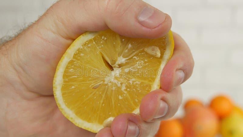 Nahe hohe Mann-Hand, die eine süße und saftige orange Frucht zusammendrückt stockfotos